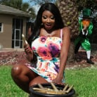 Diamond Jackson in 'A Pot of Golden Dildos'